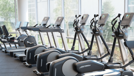 Exercise Bikes vs Elliptical Trainers vs Treadmills